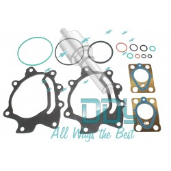 Seal Repair Kit DPF3 Delphi Pump