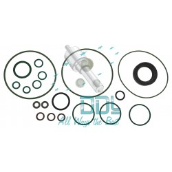 Common Rail Siemens Pump Repair Kit 5WS40273
